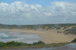 Beach-Scene-Landscape-001-250px