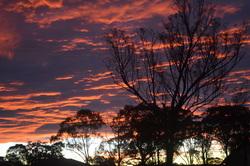 Sunset-Landscape-001-250px